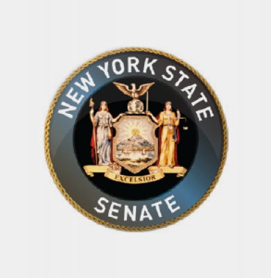 New York State Senate, 13th District