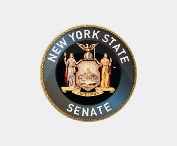 New York State Senate, 13th District
